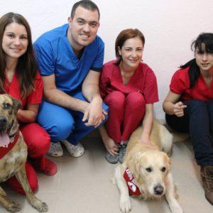 Exclusive Vets - Clinică Veterinară Sibiu